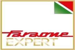 Logo Faraone Expert